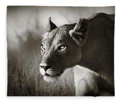 Lioness Stalking Fleece Blanket