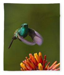 Little Hedgehopper Fleece Blanket