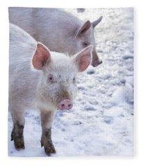 Little Piggies Fleece Blanket