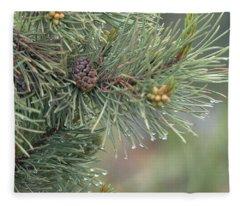 Lodge Pole Pine In The Fog Fleece Blanket