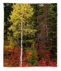 Lone Aspen In Fall Fleece Blanket