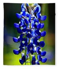 Lone Star Bluebonnet Fleece Blanket