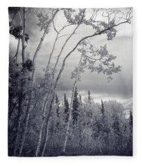 Lonesome Woods Fleece Blanket