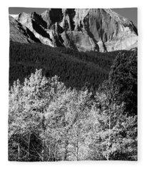 Longs Peak 14256 Ft Fleece Blanket