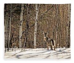Lookin Back Fleece Blanket