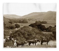 Looking Up The Carmel Valley California Circa 1880 Fleece Blanket