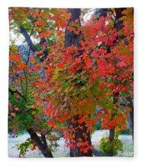 Lost Maples Fall Foliage Fleece Blanket