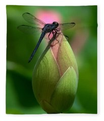 Lotus Bud And Slatey Skimmer Dragonfly Dl006 Fleece Blanket