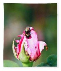 Love Bugs Fleece Blanket
