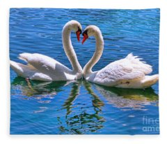 Love For Lauren On Lake Eola By Diana Sainz Fleece Blanket