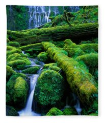 Lower Proxy Falls Fleece Blanket
