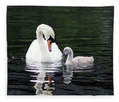 Lunchtime For Swan And Cygnet Fleece Blanket