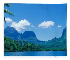 Lush Foliage And Rock Formations Fleece Blanket