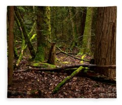 Lush Green Forest Fleece Blanket