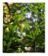 Lush Rhododendron Forest Fleece Blanket