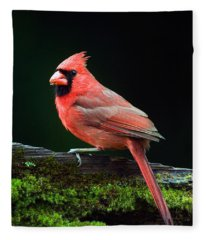 Male Northern Cardinal Cardinalis Fleece Blanket
