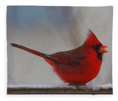 Male Northern Cardinal In Winter Fleece Blanket