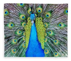 Male Peacock Fleece Blanket
