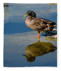 Mallard Reflection Fleece Blanket