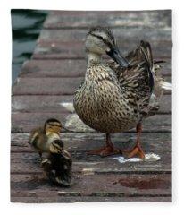 Mama Duck And Ducklings Fleece Blanket