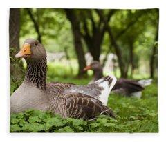Mama Goose Fleece Blanket