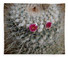 Mammillaria Geminispina Fleece Blanket