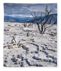 Mammoth Terraces Vertical Fleece Blanket