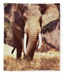 Mana Pools Elephant Fleece Blanket