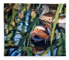 Mandarin Duck Reflections Fleece Blanket