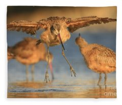Marbled Godwit  Fleece Blanket