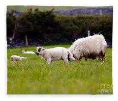 Mary Had A Little Lamb Fleece Blanket