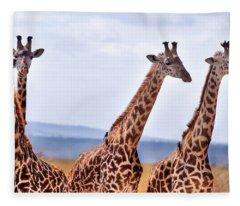 Masai Giraffe Fleece Blanket