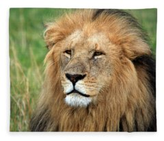 Masai Mara Lion Portrait    Fleece Blanket