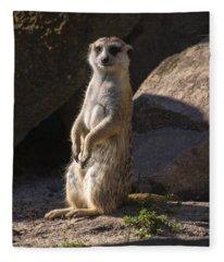 Meerkat Looking Forward Fleece Blanket