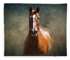 Misty In The Moonlight Fleece Blanket
