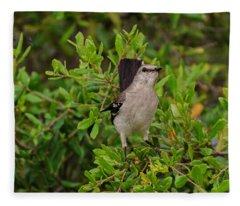 Mockingbird In Tree Fleece Blanket