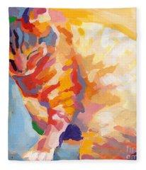 Mona Lisa's Rainbow Fleece Blanket