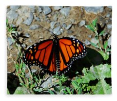Monarch Fleece Blanket