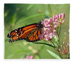 Monarch Butterfly On Milkweed Fleece Blanket