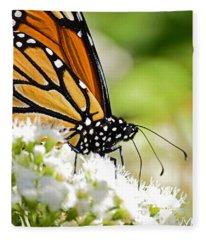 Monarch Moment Fleece Blanket