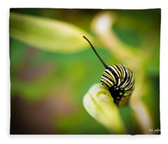 Monarch Offspring Fleece Blanket