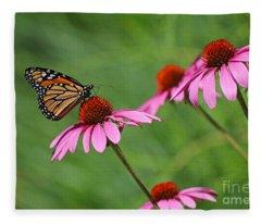 Monarch On Garden Coneflowers Fleece Blanket