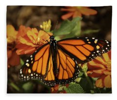 Monarch Spotlight. Fleece Blanket