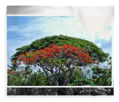 Monkey Pod Trees - Kona Hawaii Fleece Blanket