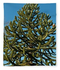 Monkey Puzzle Tree E Fleece Blanket