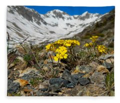 Blue Lakes Colorado Wildflowers Fleece Blanket