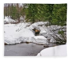 Moose In Alaska Fleece Blanket