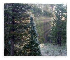 Morning Rays Fleece Blanket