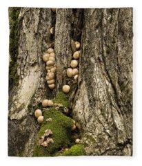 Moss-shrooms On A Tree Fleece Blanket