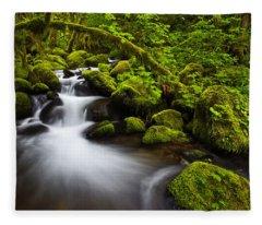 Mossy Arch Cascade Fleece Blanket